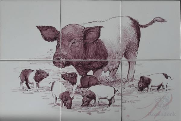RH6R, Lakdenvelder Schwein