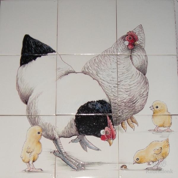 2 Freilauf Hühner