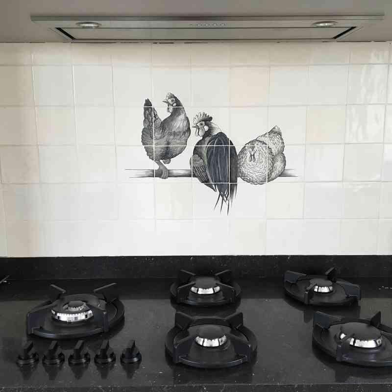 Hühner in Schwarz-Weiß