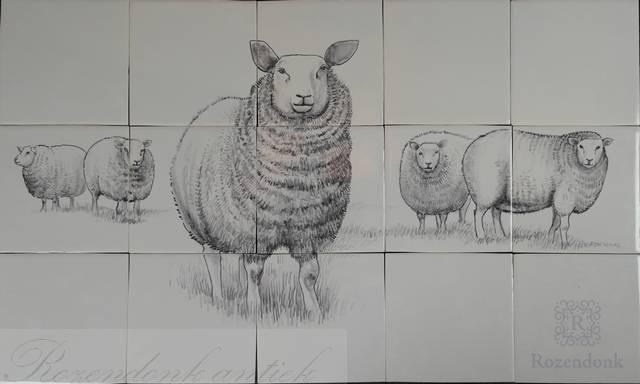 RH15 Schafen in die Wiese