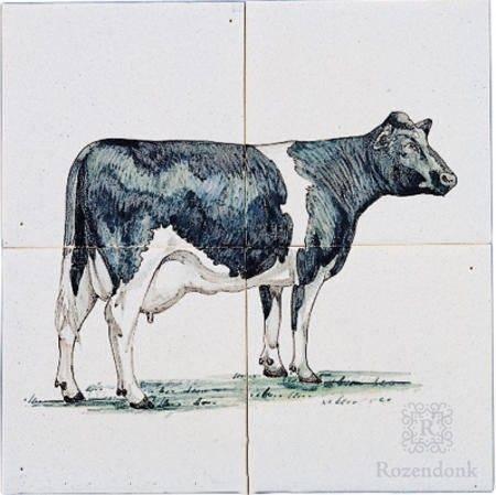 RH4-8k Kuh