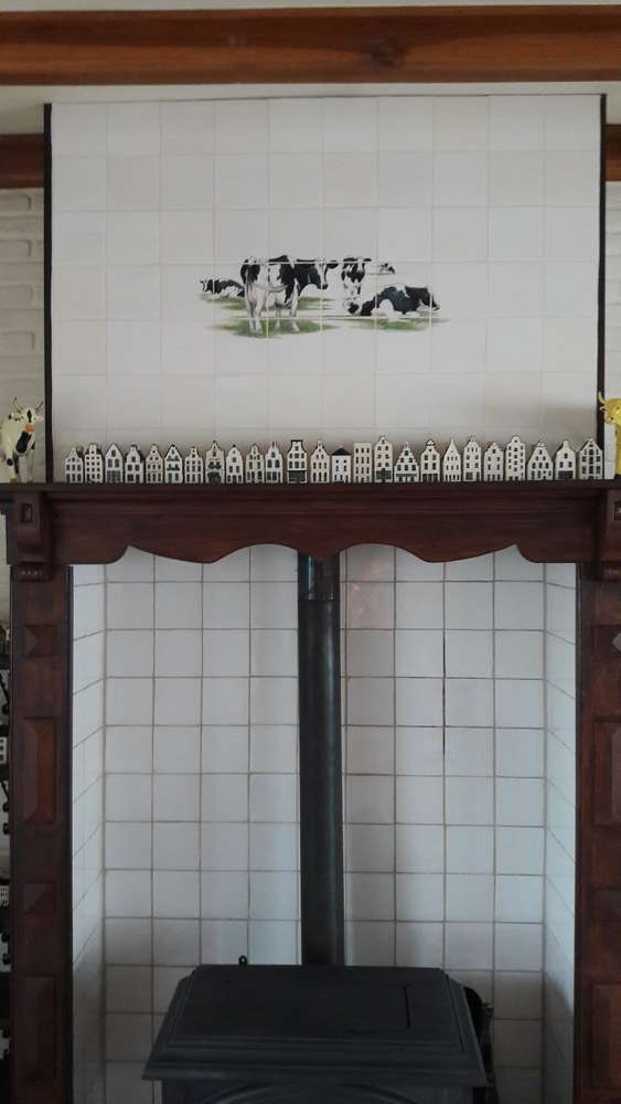 Schwartz bunte Kühe hinter Ofen