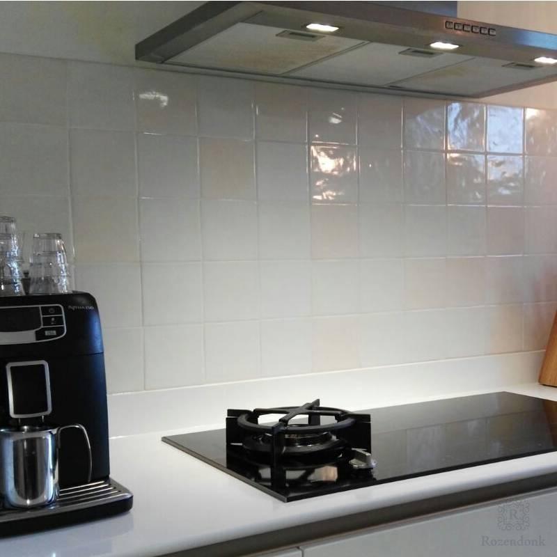 Moderne Küche mit Friesische Fliesen