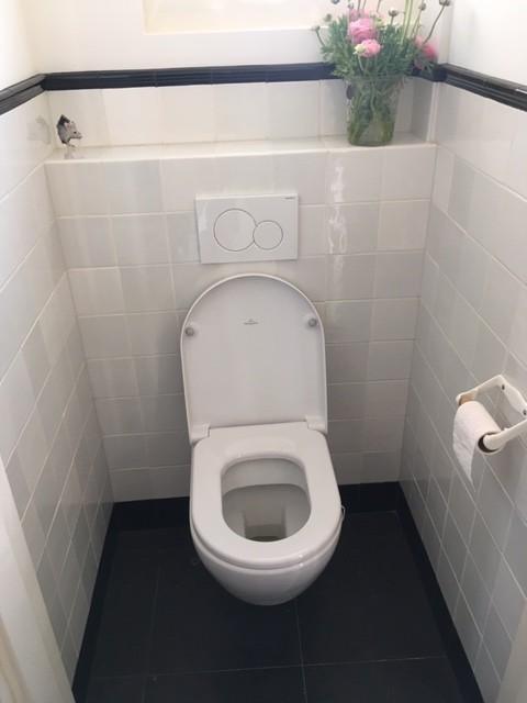 Toilette mit Friesische Fliesen