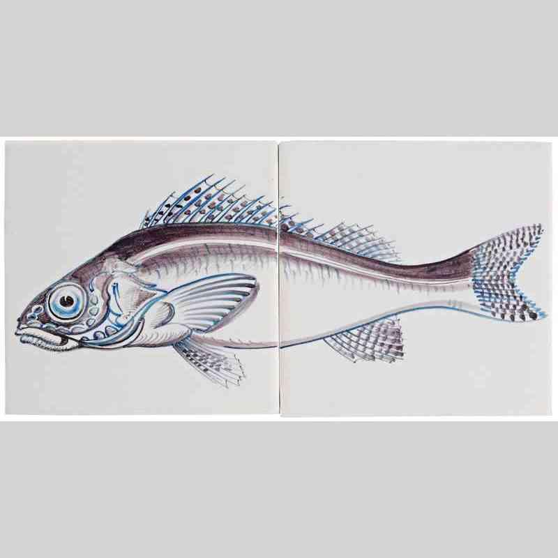 RH2-Fisk13 auf 2 Fliesen