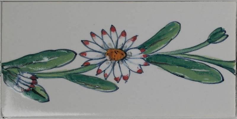 RH0-10, Gänseblümchen