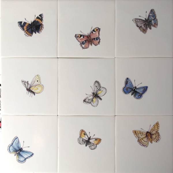 RH1-1k, Schmetterlinge