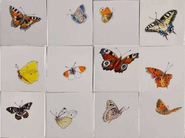 RH1-40k, Größe Schmetterlinge