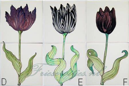 RH2-10 Schwarze Tulpen