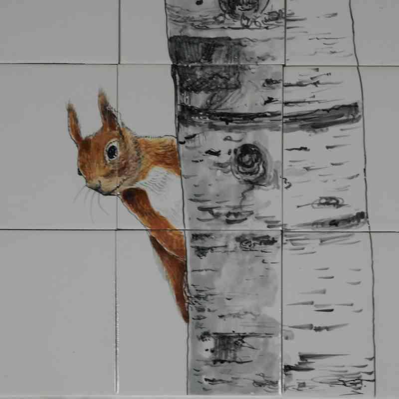 RH35-5 Eichhörnchen