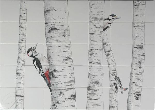 RH35-6 Spechte im Birkenbaum