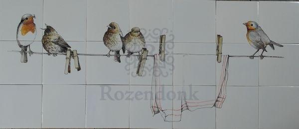 RH27-5 Rotkehlchen