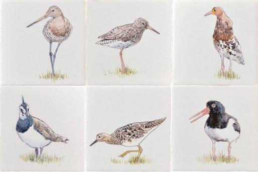 RH1-9k Grünland Vögel