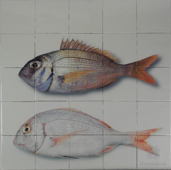 Fische auf Fliesen