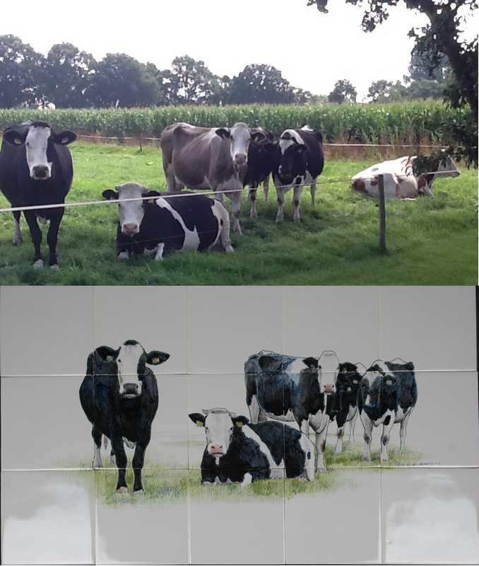 Ihre Kühe auf Fliesen