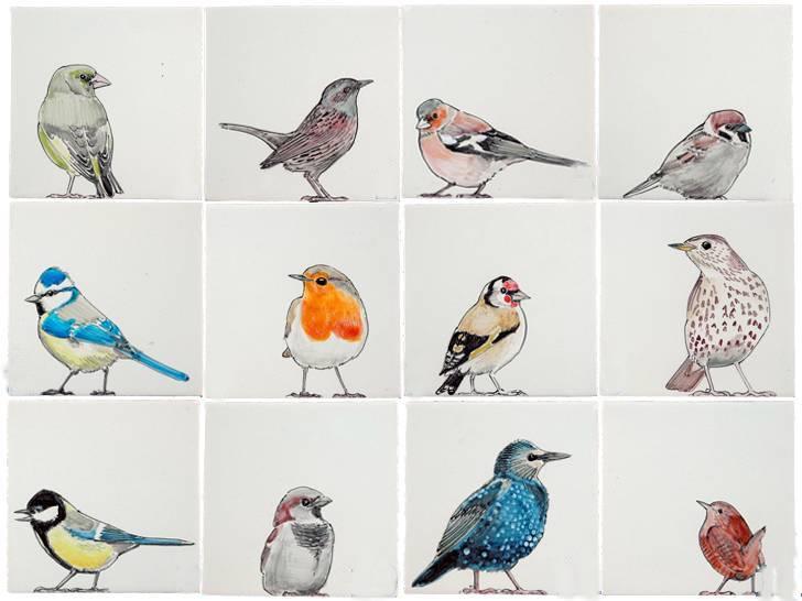 RH1-38, Vögel im Garten