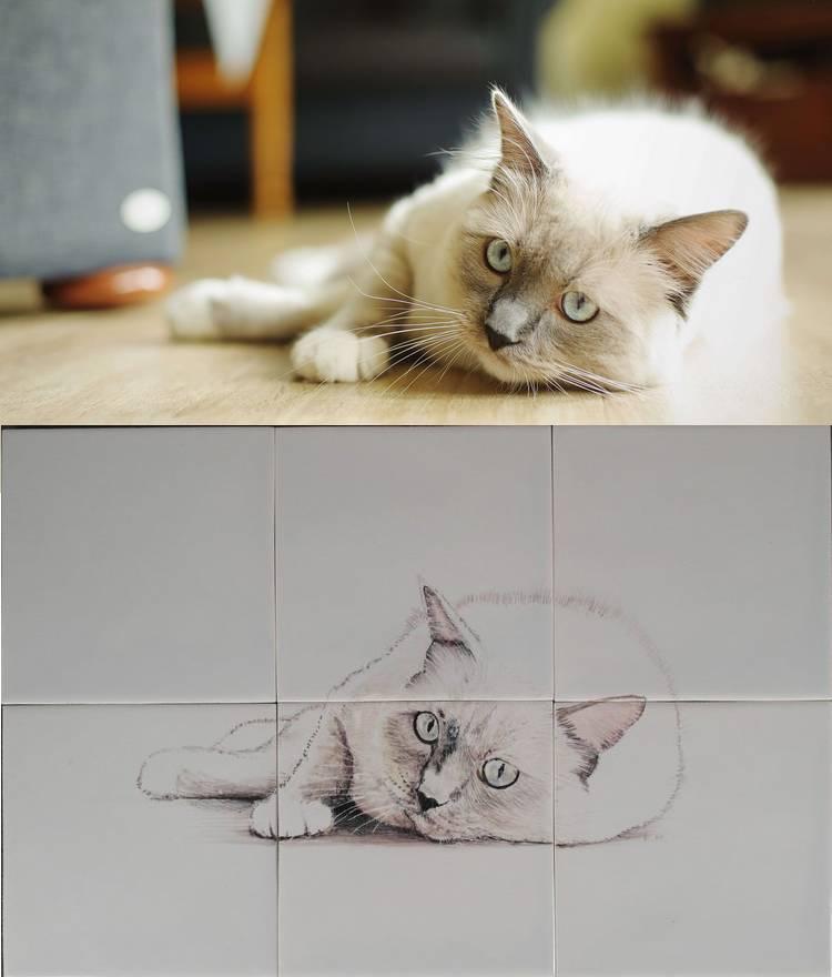 Cooper der Katze